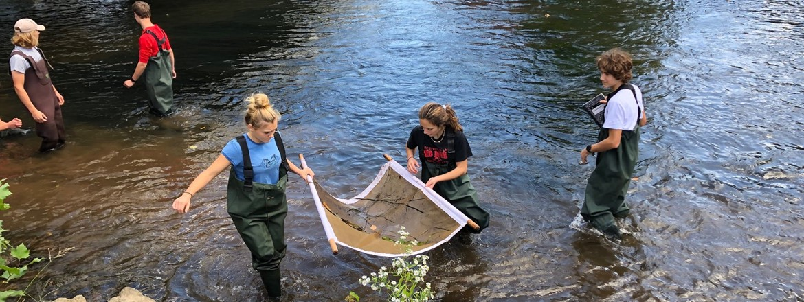 Academy II students  sifted the river to discover the quantity and variety of macro invertebrates.